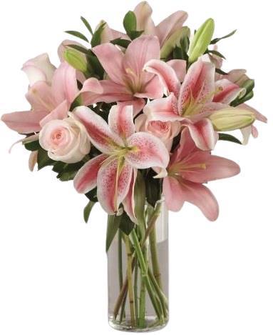 Blossom Lilies