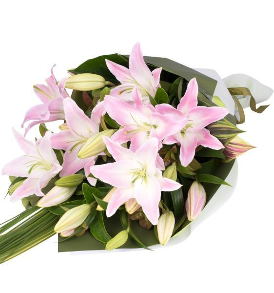 Pink Lily Tribute