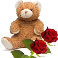 Teddy Bear and Roses