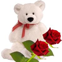 Red Roses and Teddy