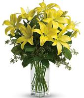 Yellow Liliums